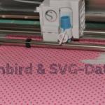 Embird und svg-Dateien