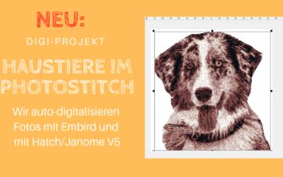 """Neu: Digi-Projekt """"Haustiere im Photostitch"""""""
